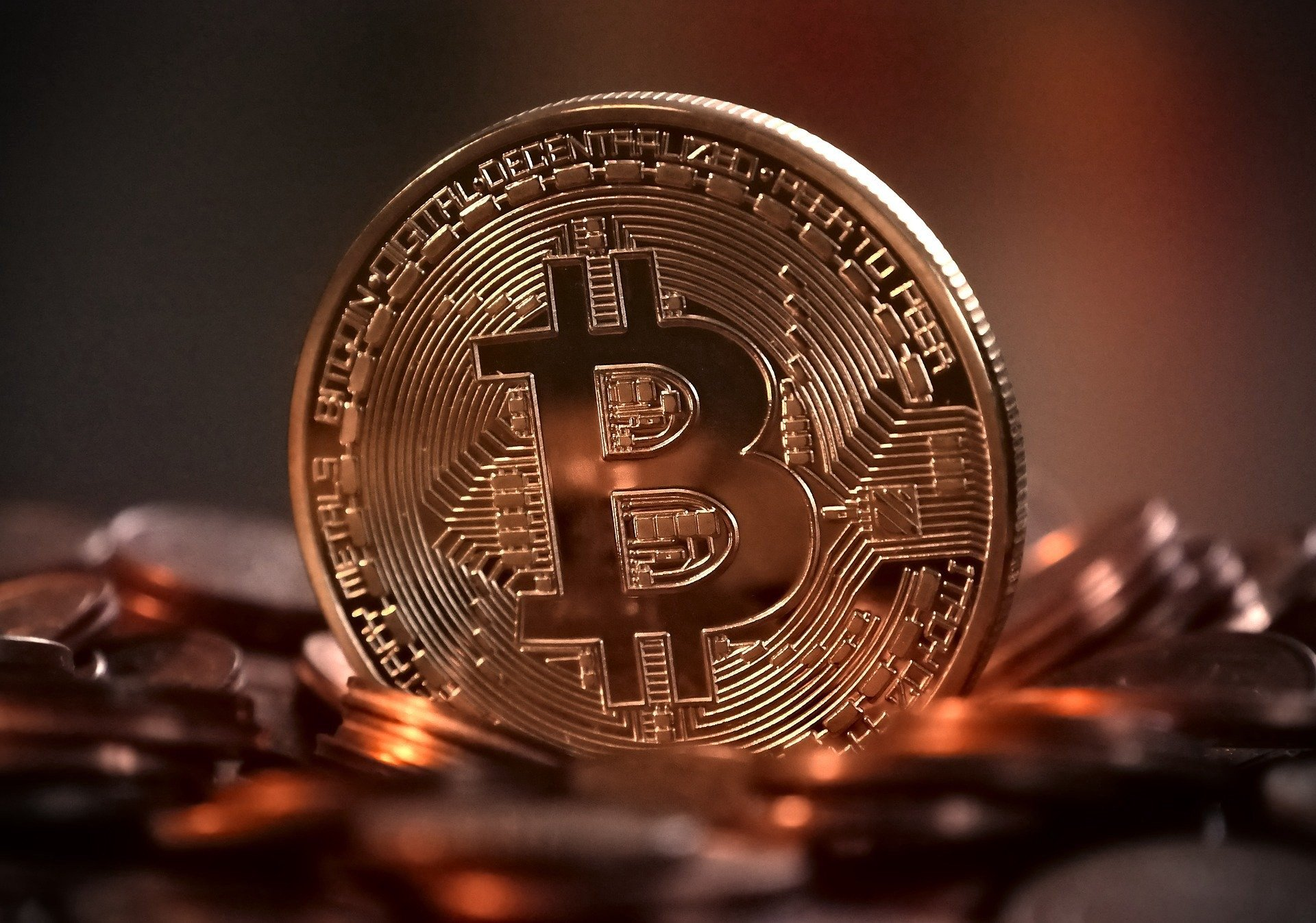Bitcoin Recover Back