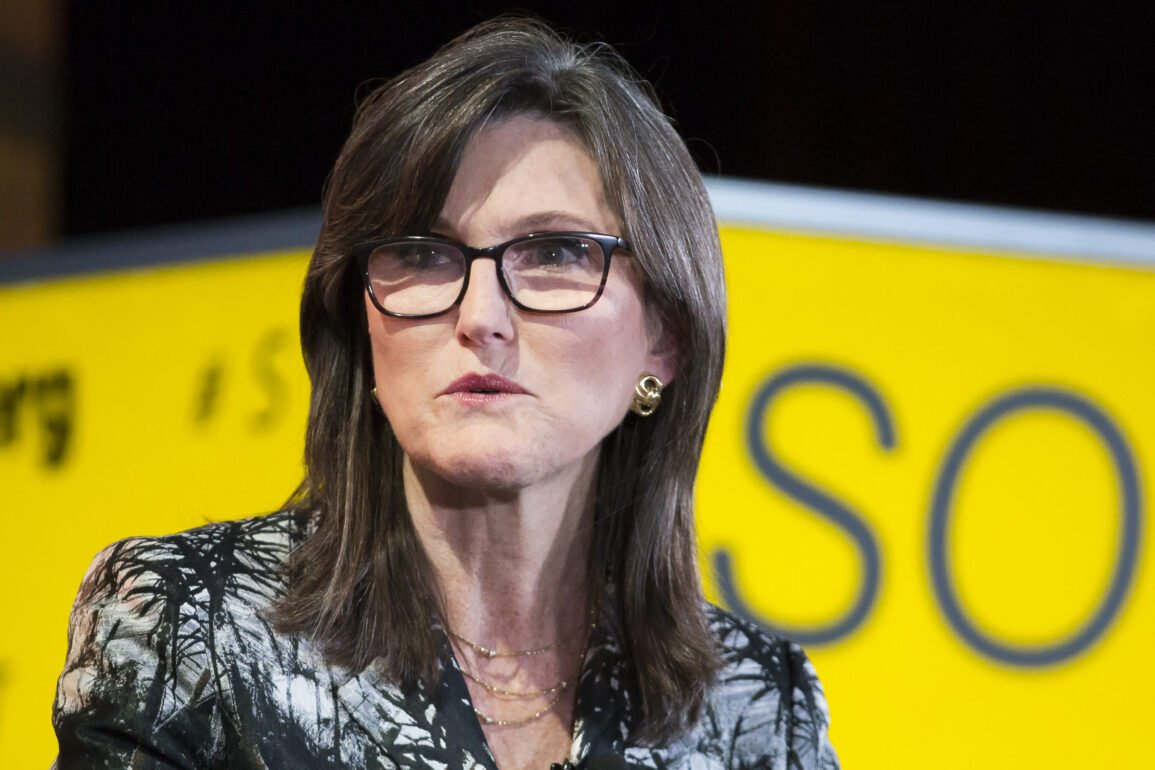 ETF that bets against Cathie Wood, the technology guru