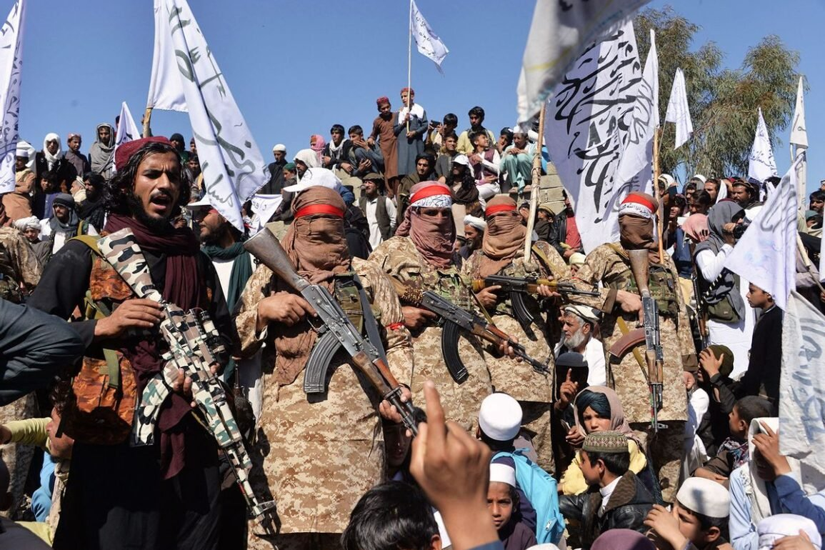 afghan taliban militants how emerged and 5 other key questions